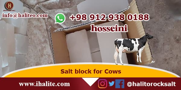 Salt Bricks For Cow