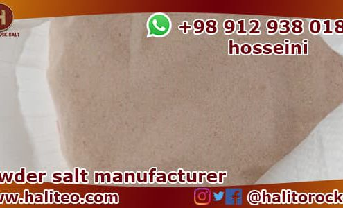 Manufacturer of powder salt
